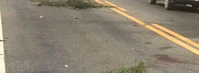 Foto de Acidente de trânsito na BR-101 deixa uma vítima fatal em Conceição do Almeida