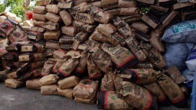Foto de Mais de 800 sacos de carvão sem documentação são apreendidos na Chapada Diamantina
