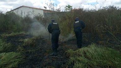 Foto de Incêndio em loteamento de Amargosa é controlado pela Guarda Municipal