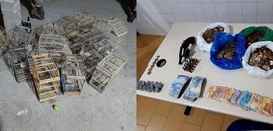 Foto de Homem é preso com dinheiro, revólver, munições e gaiolas com pássaros em bar ilegal em Governador Mangabeira