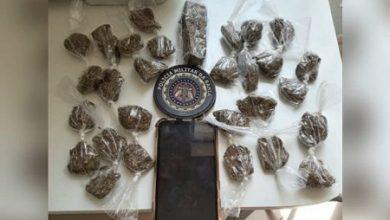 Foto de Muritiba: Polícia apreende quantidade de maconha
