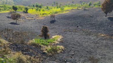 Foto de SAJ: Moradores da Região do Clube dos 1000 fogem de casa por causa de incêndio que espalhou fumaça pelo bairro