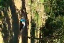 Foto de SAJ: Corpo de mulher em estado de decomposição é encontrado na Zona Rural