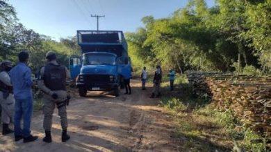 Foto de Retirada ilegal de bambu em terreno na cidade de Cachoeira é flagrada pela polícia  e prefeitura