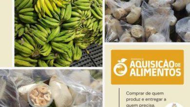 Foto de Prefeitura de Dom Macedo realiza mais uma edição do PAA Alimentos