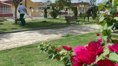 Foto de Nova variante Delta é registrada em Conceição do Almeida