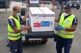Foto de Novo lote com mais de 178 mil doses de vacinas contra Covid-19 chega à Bahia
